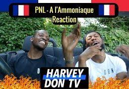 Harvey Don – PNL – A l'Ammoniaque Reaction