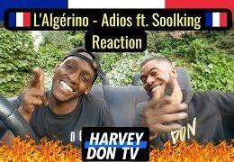 HARVEY DON TV – L'ALGERINO ft. SOOLKING – Adios (Reaction)